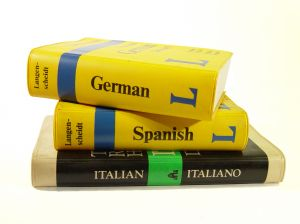 Foreign language conversation resources