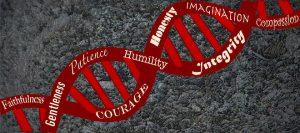 love DNA